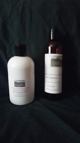 Southern Vanilla Sulfate Free Shampoo